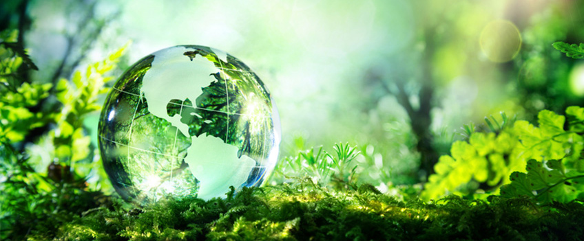 What Is Sustainable Printing?